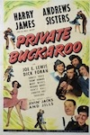 private-buckaroo-free-movie-online